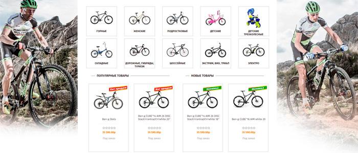 разработка спортивных интернет магазинов
